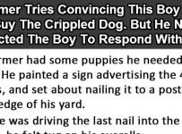 cripple-dog