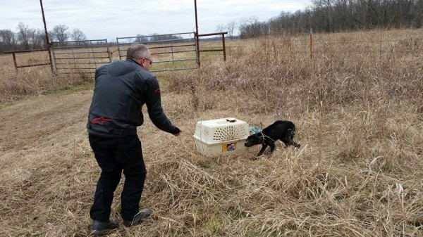 They quickly unlocked the carrier and were shocked to find that an emaciated dog was caged inside. The inside of the crate was covered in waste. Once they finally lured her out, she was hunched over from being stuck inside a small space for so long.
