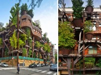 treehousebuilding